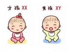 怀第一胎与二胎的区别,就是这么任性